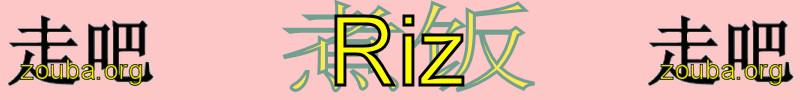 Différentes façon de cuisiner du riz sur www.zouba.org